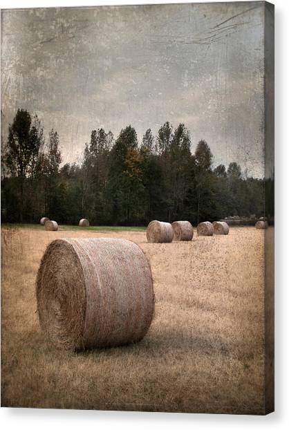 Untitled Hay Bale Canvas Print by Robert Tolchin