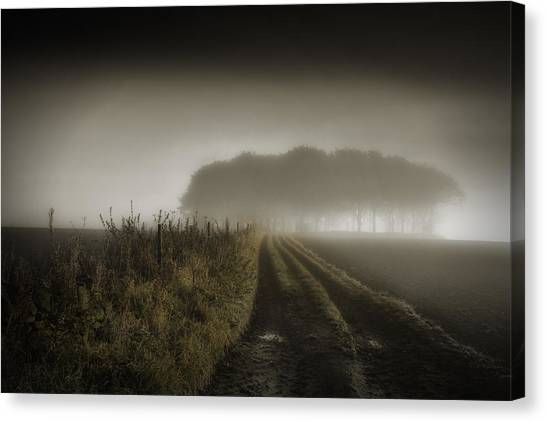 Up On T Moor... Canvas Print