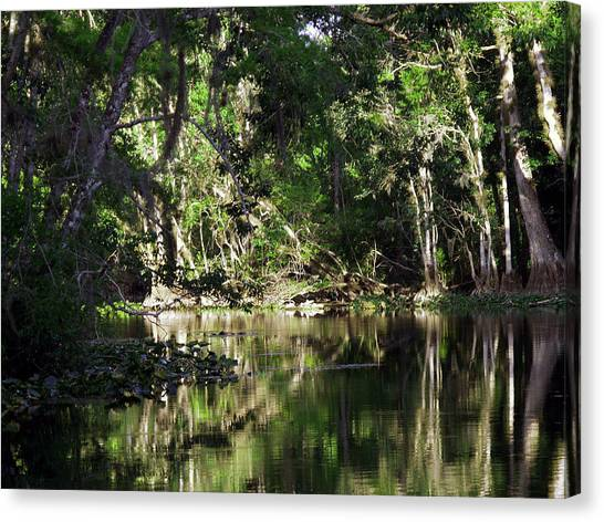 Up The Lazy River  Canvas Print