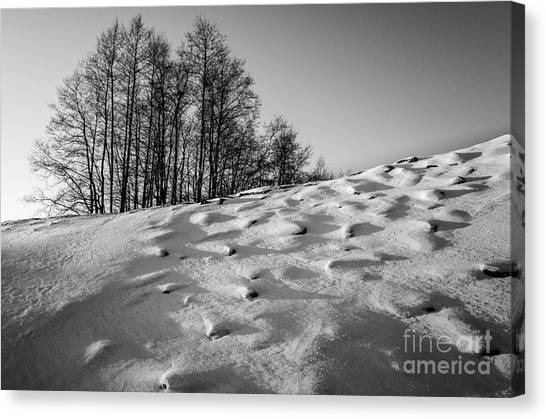 Up To The Hill Bw Canvas Print