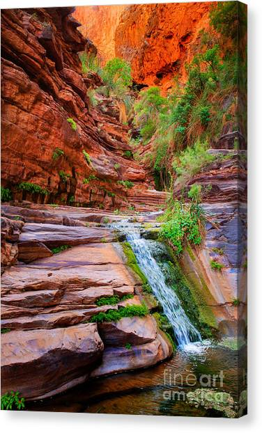 Splashy Canvas Print - Upper Elves Chasm Cascade by Inge Johnsson