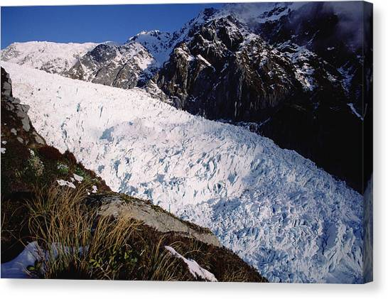 Fox Glacier Canvas Print - Upper Fox Glacier Westland Np New by Tui De Roy