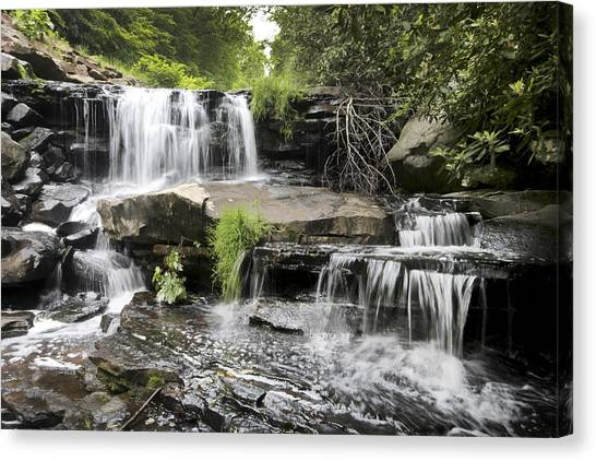 Upper Goose Creek Falls Canvas Print