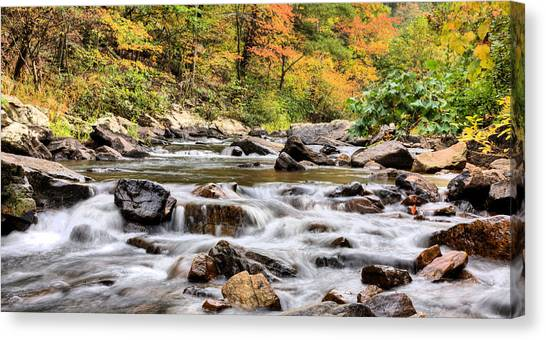 Upstream Canvas Print by JC Findley