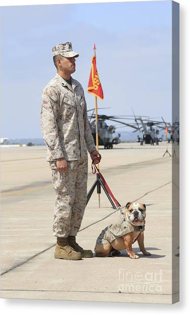 Canvas Print featuring the photograph U.s. Marine And The Official Mascot by Stocktrek Images