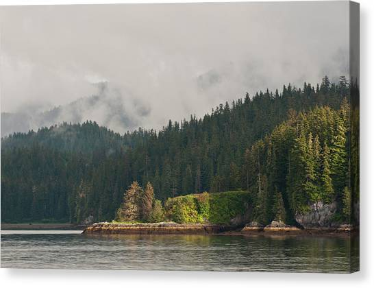 Tongass National Forest Canvas Print - Usa, Ak, Inside Passage by Trish Drury