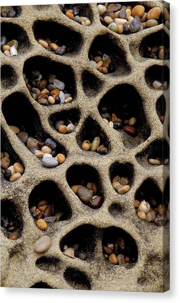 Cavity Canvas Print - Usa, California Pebbles Collected by Jaynes Gallery