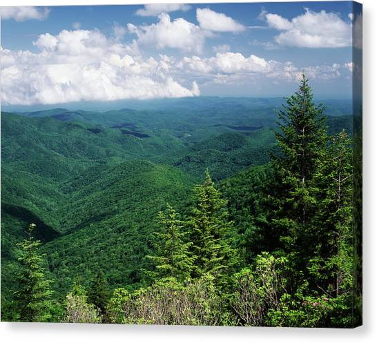 Pisgah National Forest Canvas Print - Usa, North Carolina, View Of Pisgah by Adam Jones