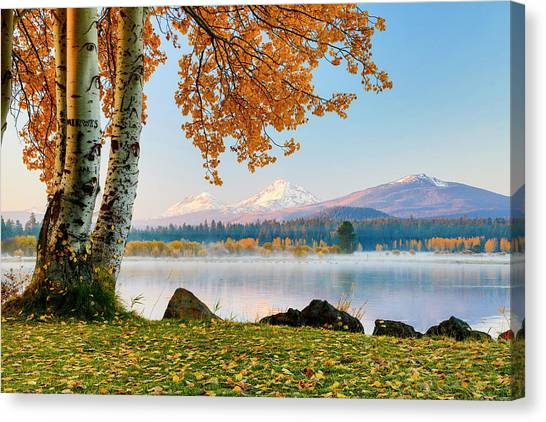 Treeline Canvas Print - Usa, Oregon, Bend, Fall At Black Butte by Hollice Looney