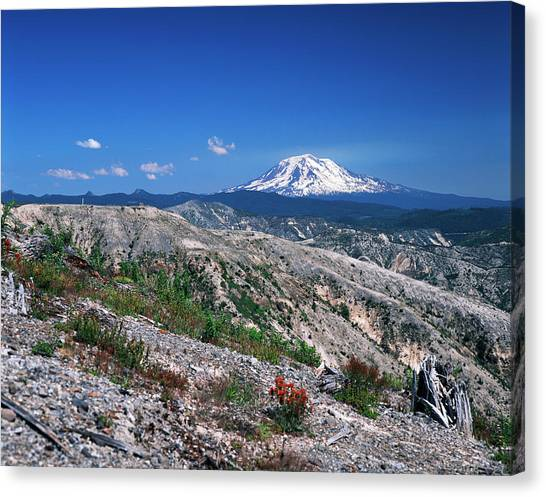 Mount St. Helens Canvas Print - Usa, Washington State, View Of Mt Adams by Kent Foster