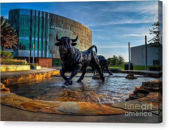 University Of South Florida Canvas Print - Usf Bulls Fountain by Karl Greeson