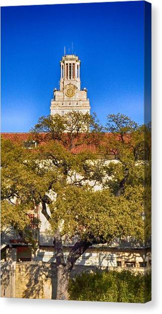 The University Of Texas Canvas Print - Ut Tower by Kristina Deane