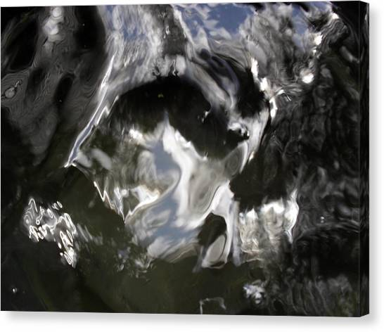 V Shaped Eyes Canvas Print by John OBrien