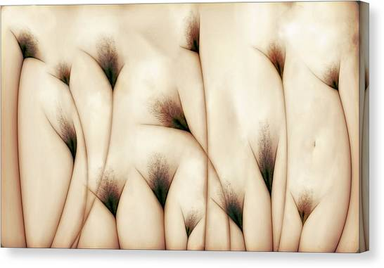 Fine Art Nudes Canvas Print - Vaginae Terram by Carlos P. Vazquez