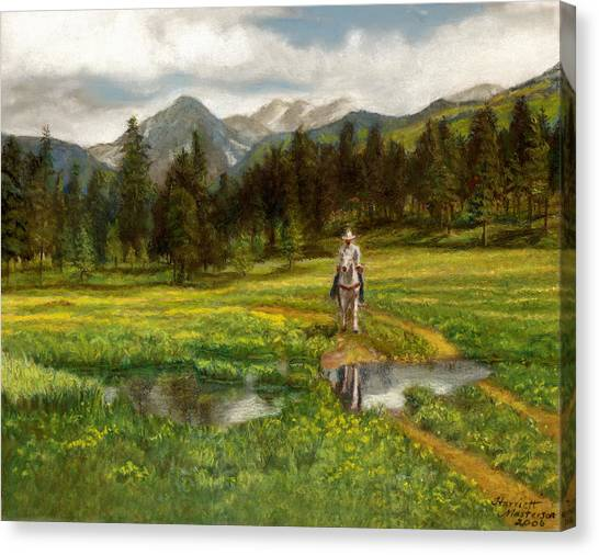 Vallecito Meadows Canvas Print
