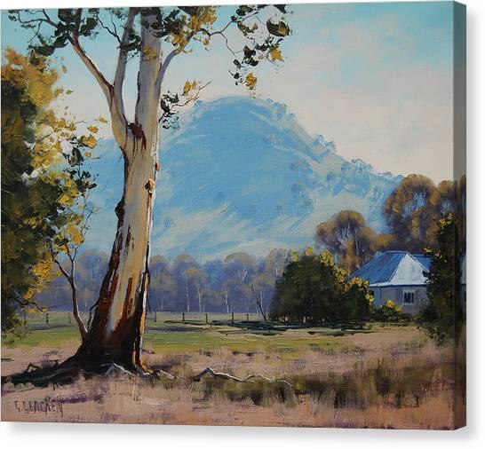 Homestead Canvas Print - Valley Gum Tree by Graham Gercken