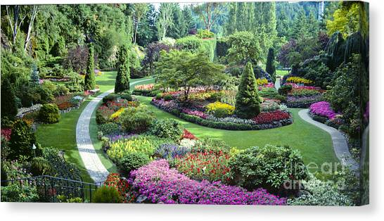 Vancouver Butchart Sunken Gardens Beautiful Flowers No People Panorama Canvas Print