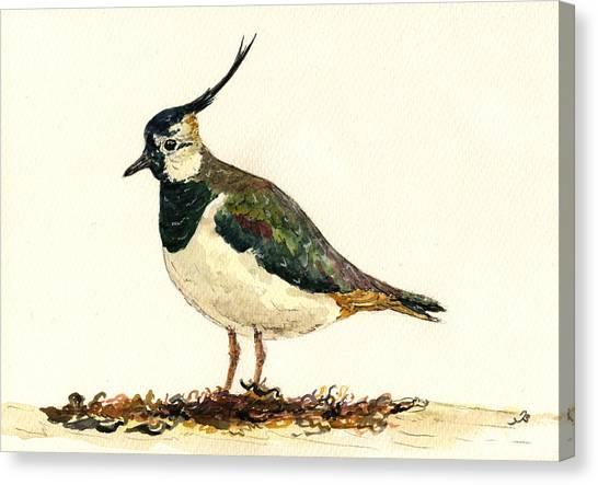 Lapwing Canvas Print - Vanellus Vanellus by Juan  Bosco