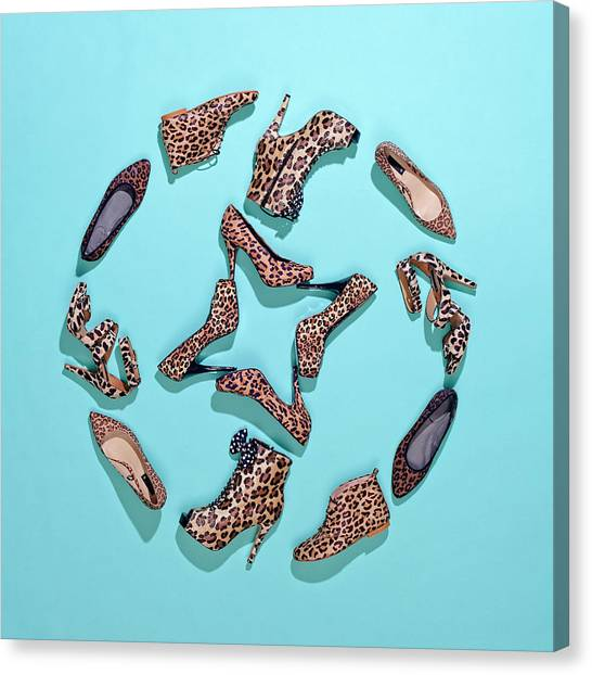 Various Leopard Print Shoes Arranged In Canvas Print