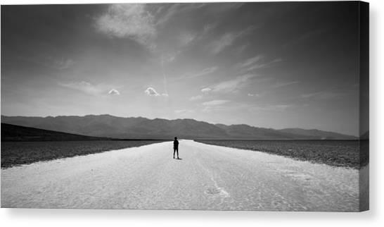 Mojave Desert Canvas Print - Vast by Peter Tellone
