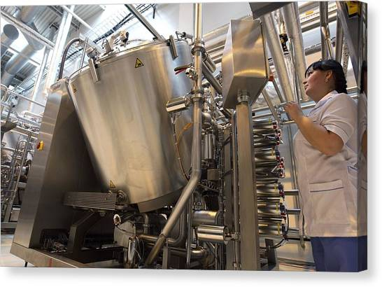Mayonnaise Canvas Print - Vat Of Mayonnaise At A Factory by Science Photo Library