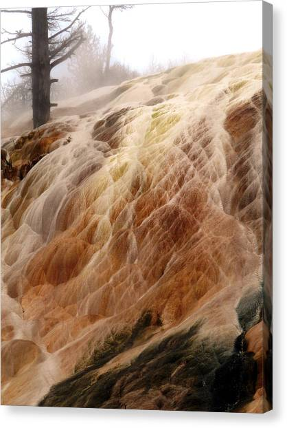 Veil Of Color Canvas Print