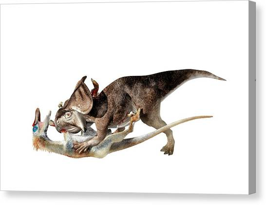 Velociraptor Canvas Print - Velociraptor Attacking Protoceratops by Jose Antonio Pe�as