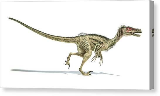 Velociraptor Canvas Print - Velociraptor Dinosaur by Leonello Calvetti