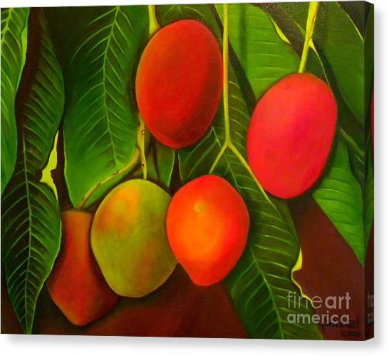 Venezuelan Mangos Canvas Print