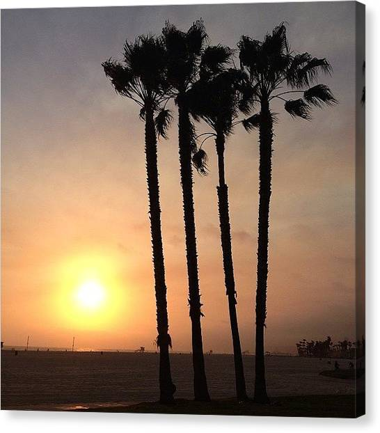 Venice Beach Canvas Print - #venice #beach #sunset by Jeff Miles