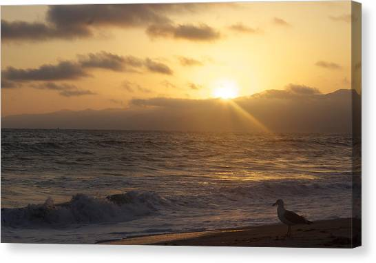 Venice Beach Sunset Canvas Print by Rollie Robles