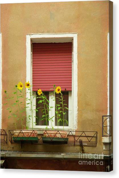 Venice Italy Yellow Flowers Red Shutter Canvas Print