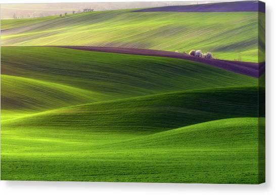 Farm Landscape Canvas Print - Verdant Land by Piotr Krol (bax)