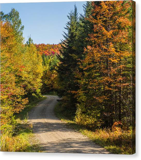 Vermont Country Road Canvas Print