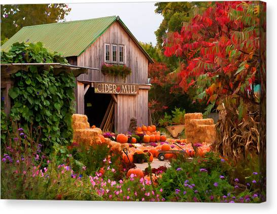 Vermont Pumpkins And Autumn Flowers Canvas Print