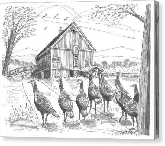 Vermont Wild Turkeys Canvas Print
