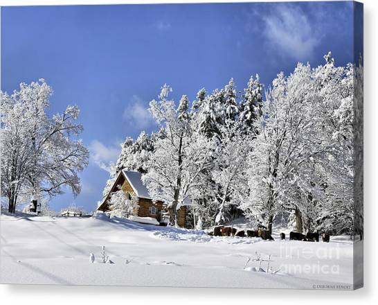 Vermont Winter Beauty Canvas Print