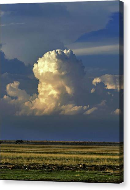 Mount Kilimanjaro Canvas Print - Vertical Cumulus Clouds by Babak Tafreshi