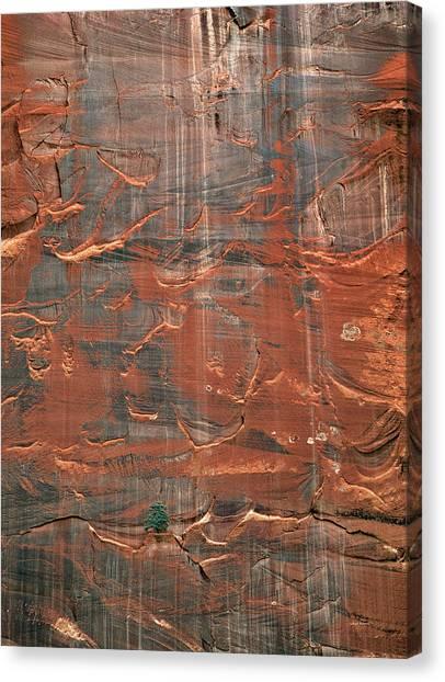 Capitol Reef National Park Canvas Print - Vertical Design by Leland D Howard