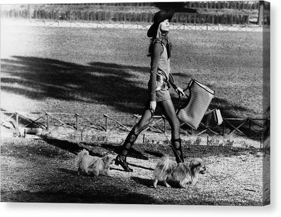 Sun Belt Canvas Print - Veruschka Walking Dogs In Rome by Henry Clarke