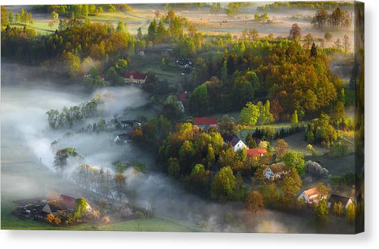 Aerial Canvas Print - Very Early Spring by Izabela Laszewska-mitrega/darek Mitr?ga