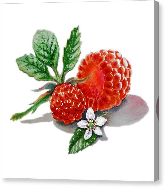 Raspberries Canvas Print - Artz Vitamins A Very Happy Raspberry by Irina Sztukowski