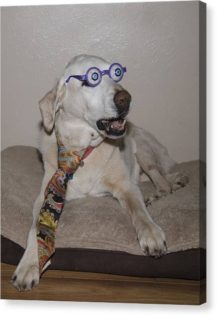 Very Intelligent Dog Canvas Print