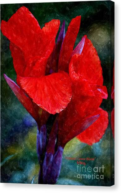 Vibrant Canna Bloom Canvas Print