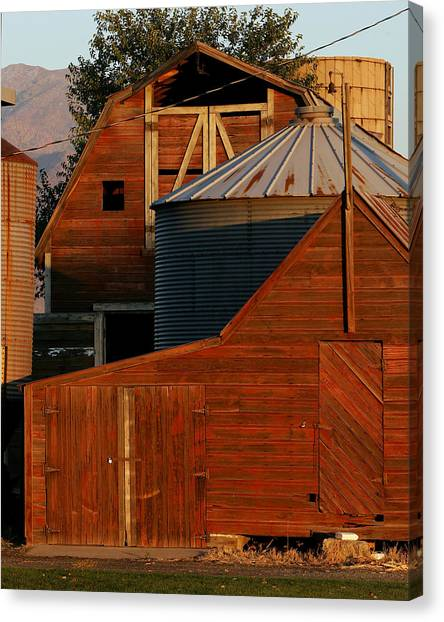 Vibrant Red Barn And Out-buildings Canvas Print by Kirk Strickland