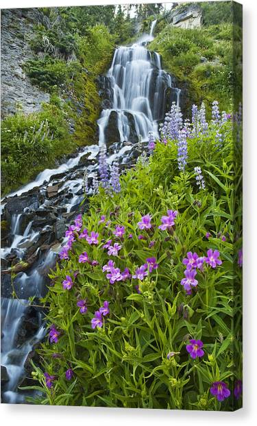 Vidae Falls And Flowers Canvas Print