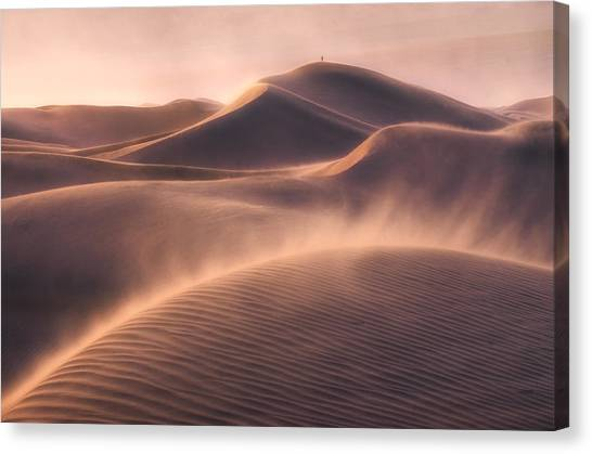 Sand Dunes Canvas Print - Viento De Arena by Inigo Cia