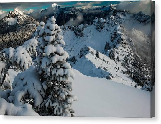 Treeline Canvas Print - View From Below by Ryan McGinnis