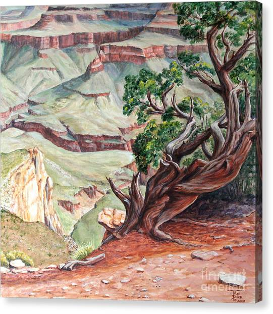 View From Cedar Ridge Trail Canvas Print
