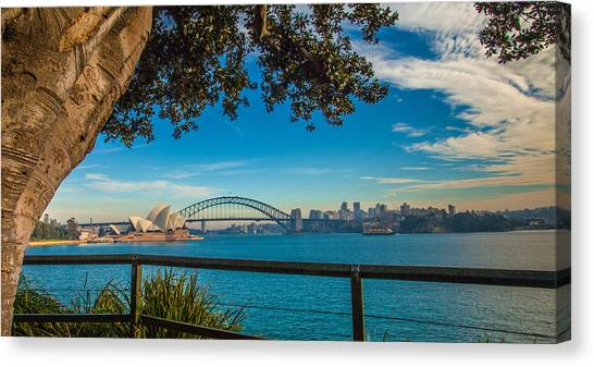 View From Lady Macquarie's Chair Canvas Print by Dasmin Niriella